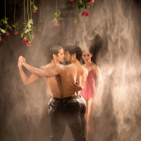 – Tango...Tango! © Christina Baumann-Canaval